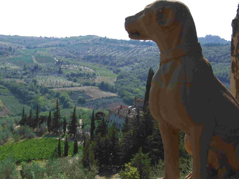 CANTINE APERTE 2014La Toscana è Pet Friendly